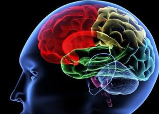 los-cinco-elementos-de-la-inteligencia-emocional1